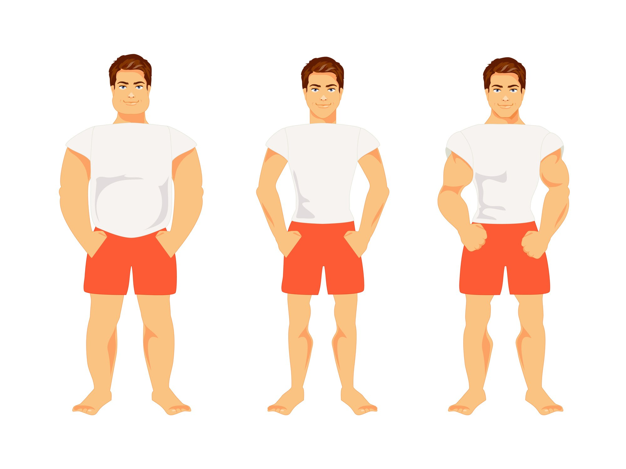 Endomorph, mesomorph, ectomorph body types